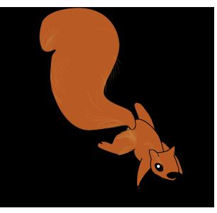 squirrel_climb_down